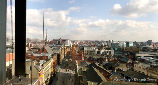 Leeds from the Biobank Building