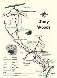 Map of Judy Woods