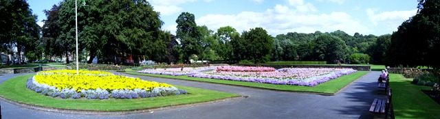 Summer flower beds in the park