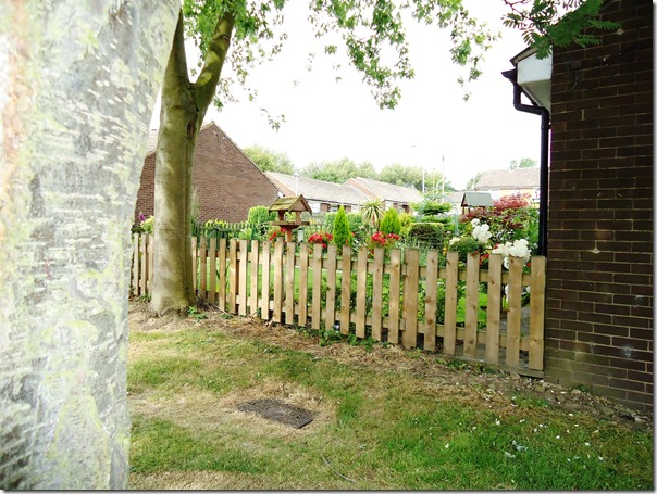 Note the tree overhanging Hamish's Garden