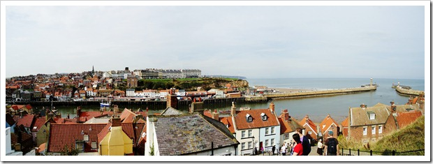 Whitby from the steps