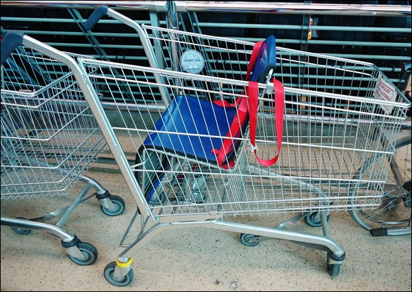 Tesco Disabled child's Trolley