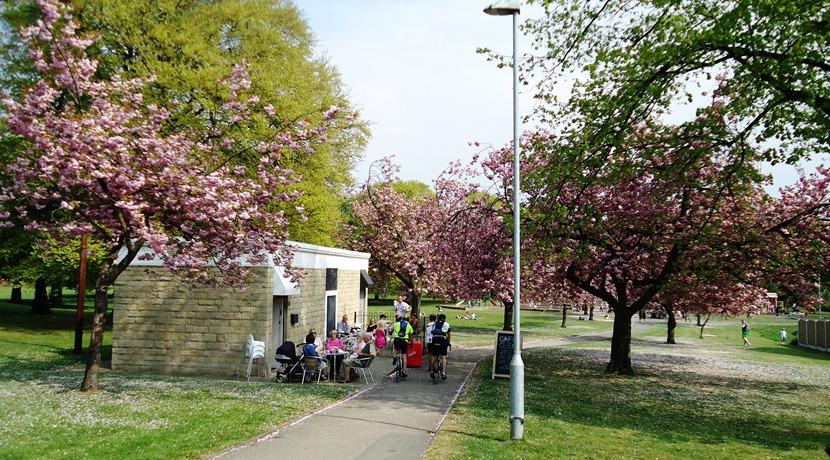 Our Park Cafe