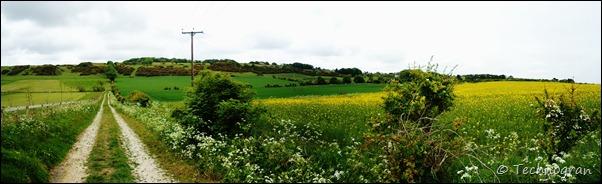 Walk to Reighton village stitch